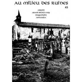 AU MILIEU DES RUINES 3 (Fr)