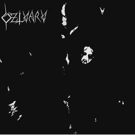 DZLVARV - Dzlvarv