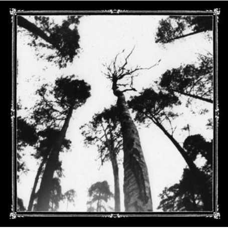 ANCESTORS BLOOD - When the Forest Calls . CD