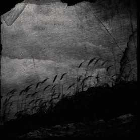 VSPOLOKH / VIKHR - Amongst Mossy Stones