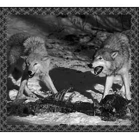 HADAK URA / SACRED DOMINIONS - Sacred Dominions / Hadak Ura . CD