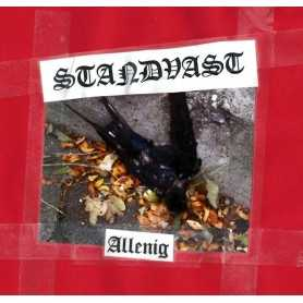 STANDVAST-Allenig