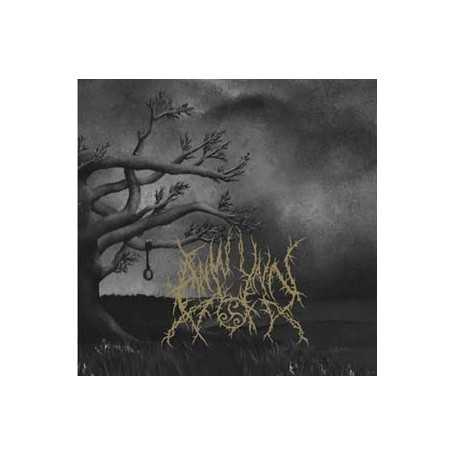 ANWYNN - Voices of Perdition . CD