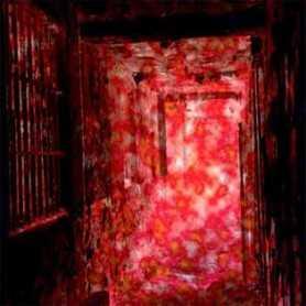 ELIMI - Asylum . CD