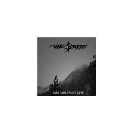 THE STONE - Neke Rane Krvare Vecno . CD