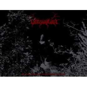 VERZIVATAR - In the Shadow of Sombre Clouds . CD