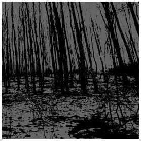 PSYKOTISK / VREDGAD - Split S/T . CD