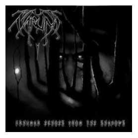 ARUM - Inhuman Echoes from the Shadows