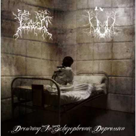 ILLNESS / SIRS - Drowning In Schizophrenic Depression