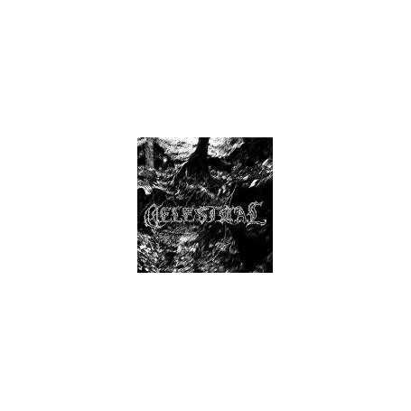 Celestiial - Desolate North
