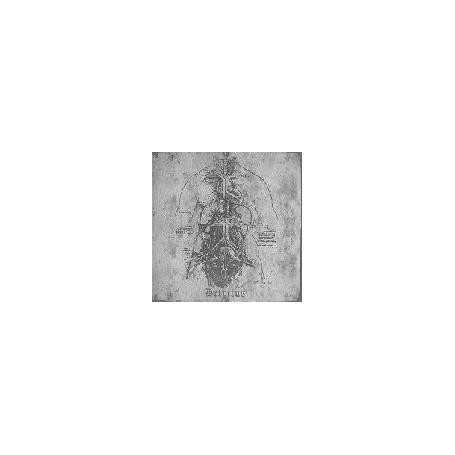 Contra Ignem Fatuum - Detritus