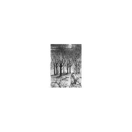 Lupus Nocturnus - Suicidal Thoughts Pt. I