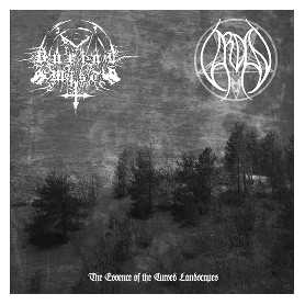 BURIAL MIST / VARDAN - The Essence Of Cursed Landscapes