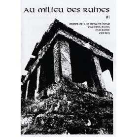 AU MILIEU DES RUINES - 1