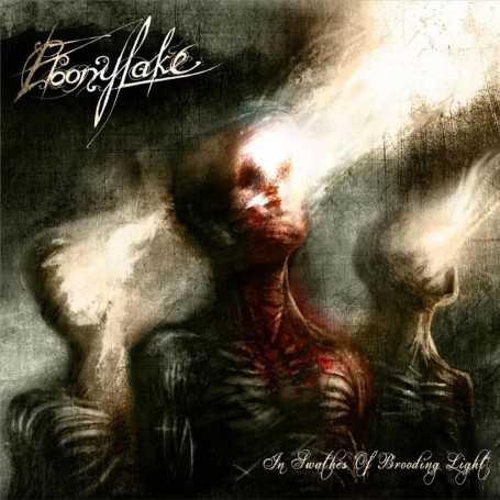 EBONYLAKE - In Swathes Of Brooding Light . CD
