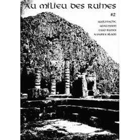 AU MILIEU DES RUINES 2 (Fr) . Zine